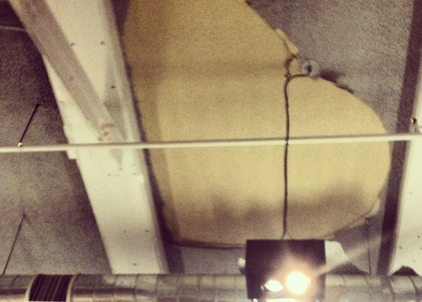 3520_reggphoto_ceiling